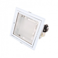 DLS8 Corp de il tip downlight Lumineco ALB